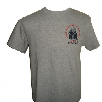 Beyond The Call Of Duty 9/11 Twin Towers PD FD PAPD t-shirt - Our exclusive design, this t-shirt has a tribute in picture to the FD, PD and PAPD of 9/11